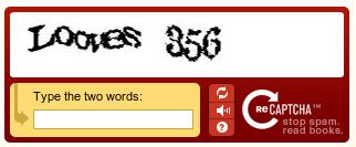 A ReCAPTCHA MailHide example.